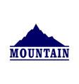 abstract mountain blue concept logo icon vector image vector image