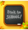 Back to school autumn chalkboard card vector image