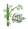 bamboo green enjoy every moment card vector image vector image