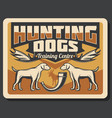 hunting dogs hunter horn and antler trophy poster vector image vector image