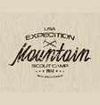 Mountain emblem for t shirt vector image vector image