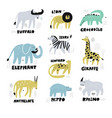 african animals hand drawn characters set vector image vector image