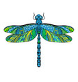 beautiful bright dragonfly concept vector image vector image