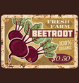 beetroot metal plate rusty beet root vegetables vector image vector image