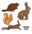 forest animal hare rabbit beaver and squirrel vector image vector image