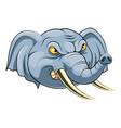 mascot head an elephant vector image vector image