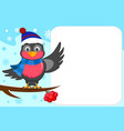 bird bullfinch in a hat and scarf sitting on a vector image