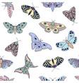 butterflies and moths vector image vector image