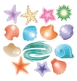 Collection of Sea Shells and Stars vector image