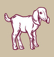 lamb icon hand drawn style vector image