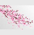 realistic sakura beautiful sakura branches vector image vector image