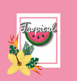 tropical watermelon fruit hibiscus and bird of vector image vector image