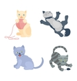 Cats set vector image