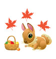 cute rabbit with a wicker basket full of apples vector image vector image