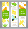honey vertical banners with flat honey elements vector image