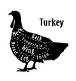 cut turkey diagram for butcher poster vector image
