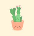 cute cactus succulent cartoon vector image vector image