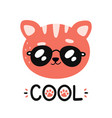 cute happy smiling cool cat in sunglasses vector image