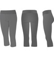 grey three quarters pants vector image vector image