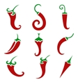 pepper isolated on light background vector image vector image