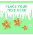 pocket bag flourish design vector image