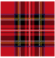 Royal Stewart Tartan Seamless Cloth Pattern vector image vector image