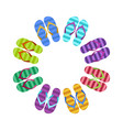 summer colorful flops in circle vector image