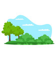summer natural park green forest background vector image vector image