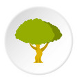 tree icon circle vector image vector image