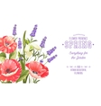 Background with beautiful poppies vector image vector image