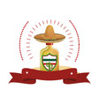 colorful arch bottle of tequila with mexican hat vector image vector image