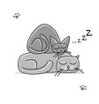cute sleeping cats sketch for your design vector image vector image