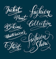 fashion and bikini hand written typography vector image vector image