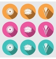 Flower icon set Camomile daisy lily water-lily vector image vector image