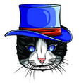 funny british cat hipster in gray hat vector image