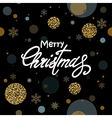 Greeting Christmas background vector image