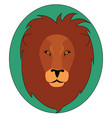 head a lion on white background vector image