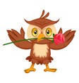 owl with rose on white background vector image vector image