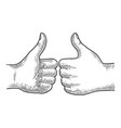 thumb up hand gesture sketch vector image