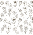 drawing flowers decoration pattern vector image