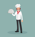 a male chef with a cooked dish vector image