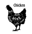 cut of chicken diagram for butcher poster for vector image