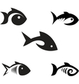 Different options of the stylized fishes on a vector image