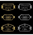 Golden and silver labels vector image vector image