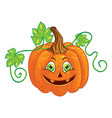 halloween character pumpkin isolated one vector image vector image