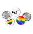 lgbt pride and flag on steel pin brooch vector image vector image