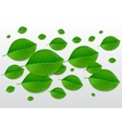 Nature green leaves background vector image vector image