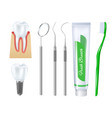 realistic dental set vector image