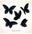 set black butterflies in five views vector image