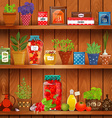 shelves with delicious organic food and different vector image vector image